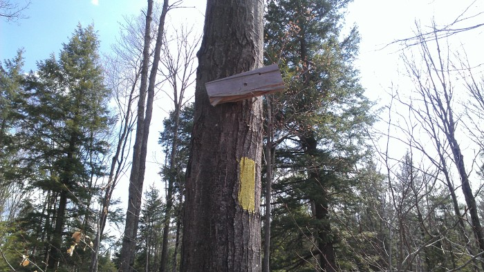 The trail sign is unreadable, but the entire trail is well marked with yellow blazes.