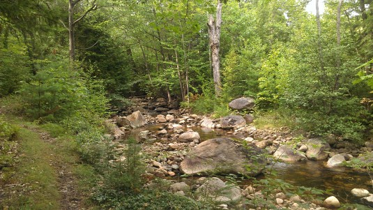 We hiked along the Austin Brook in search of the cable car.