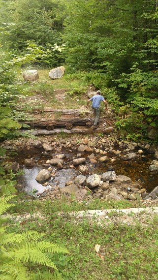 Andrew crosses a brook along Mill Brook Road to hike ahead to the next crossing.