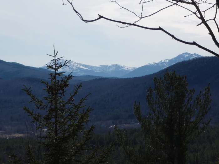 A nice view of the Presidential Range from Mary's Aerie.
