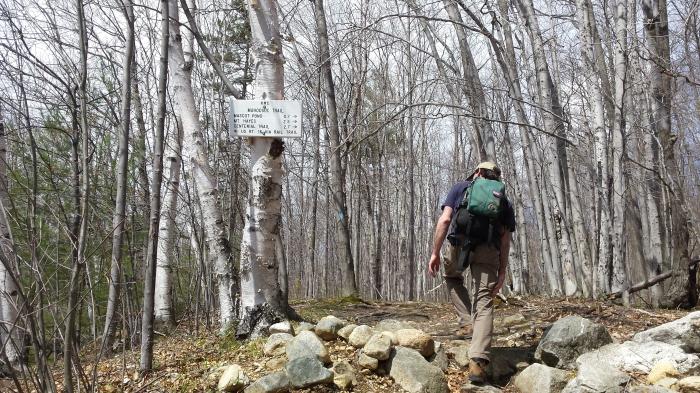 Hiking on the Mahoosuc Trail.