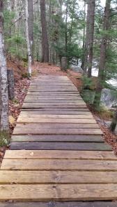 A bridge along the Gale River Trail.