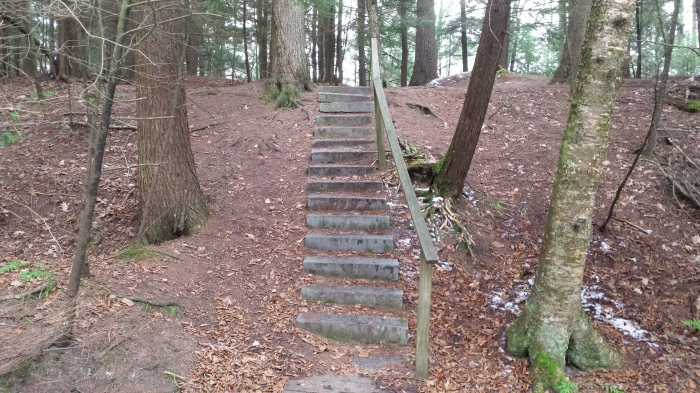 Stone steps lead both down to a bridge and then up and out to get across a ravine.