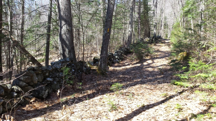 A stonewall marks the property boundary.