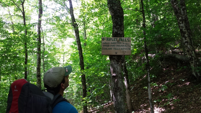 Stopping to read the sign to Ripley Falls.
