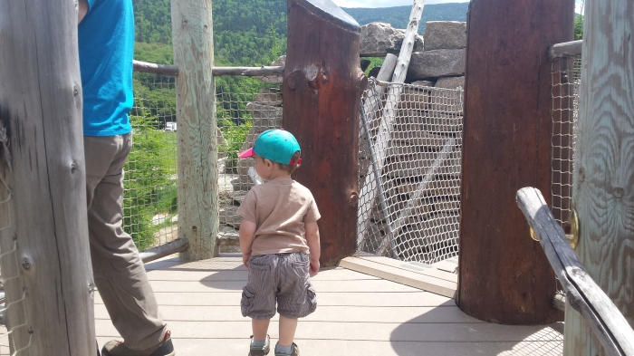 We didn't walk across the rope bridge, but we had fun climbing up and down the steps.