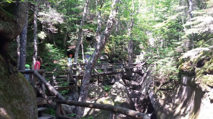 The boardwalk is expertly crafted through the gorge.