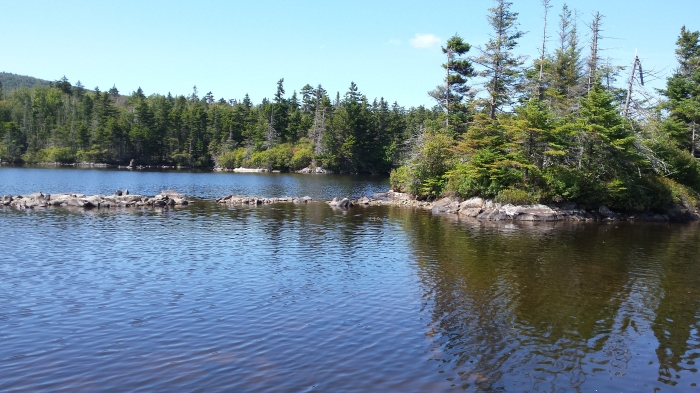 Long Pond has many small islands to paddle around and explore.