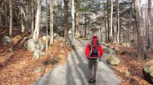 Andrew walks ahead along the paved pathway.